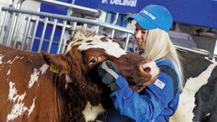 Farmer with cow